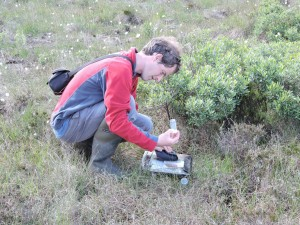 Reuben Neville about to release 2 Large heath butterflies